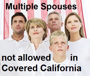 Covered California offers tips on how to remove multiple husband-wife relationships in the household.